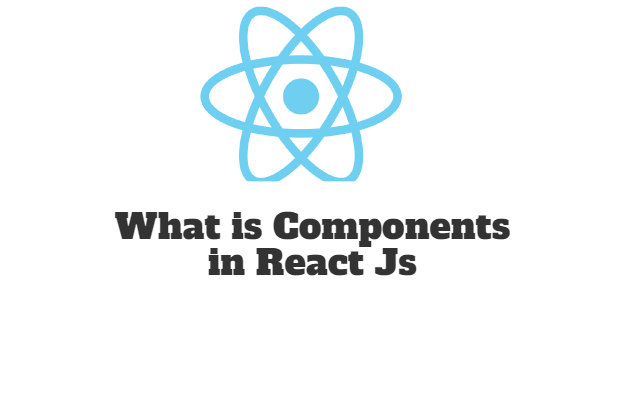 What is Components